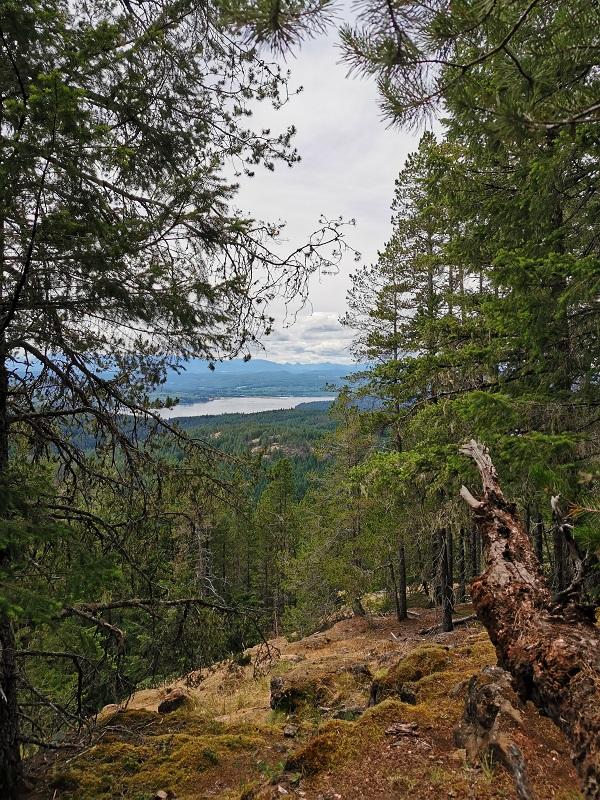 Mount McBride