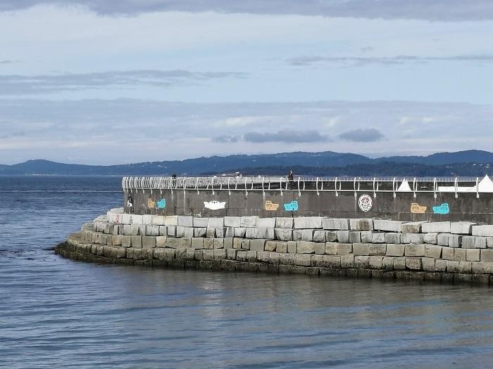 Vancouver Island Lakes